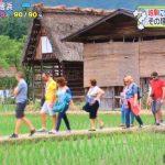 ZIP! 岐阜に外国人観光客が急増 木造建築 高山祭 飛騨牛 鵜飼い 田舎の風景