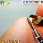 あさチャン 0,5mmの芸術 シャーペンの芯で究極の極細アート